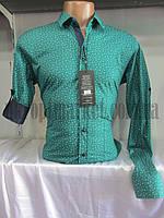 "Рубашка мужская стильная ""Zazzoni"" ZR-4471"