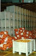 Овощехранилище, холодильный склад, холодильник промышленный