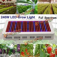240Вт садоводства Полный спектр LED Завод расти рассада лампы свет парниковых растений