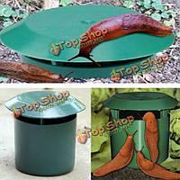 Огород безопасная физика ловушки улитки экологический limax ловец слизняка улитки