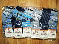 Носочки для мальчиков Modenweek оптом 23-38р