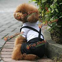 Собака смокинг костюм галстук рубашка с воротничком щенок щенок свадебный наряд