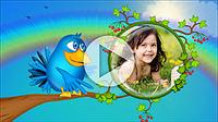 Шаблоны слайд-шоу «Веселые птички»