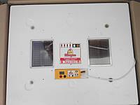 Бытовой инкубатор с автоматическим переворотом «Теплуша» 63 яйца