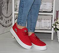Кеды женскмие лакосты шнурки красный текстиль