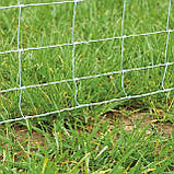 Шарнирная сетка ДФЛ, фото 9