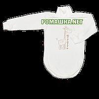 Детский боди-гольф р. 86 с начесом ткань ФУТЕР (байка) 100% хлопок ТМ Алекс 3189 Бежевый1