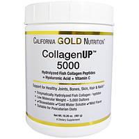 Коллаген. Гидролизированные пептиды рыбного коллагена + Гиалуроновая кислота (461 г)