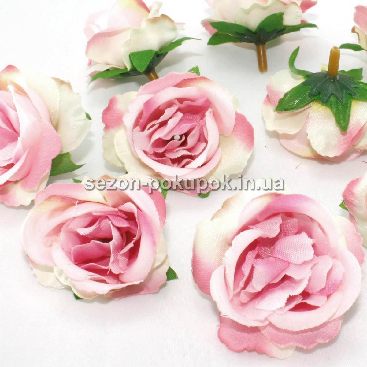 Цвет бело розовый