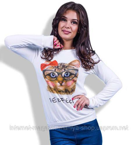 Кофточка женская кот