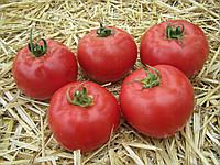 Томат Афен F1 семена высокорослого раннеспелого розового гибрида томата с мясистой внутренней структурой