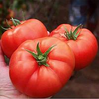Семена средне-ранего крупноплодного высокорослого гибрида томата который не сбрасывает завязь Монталбан F1