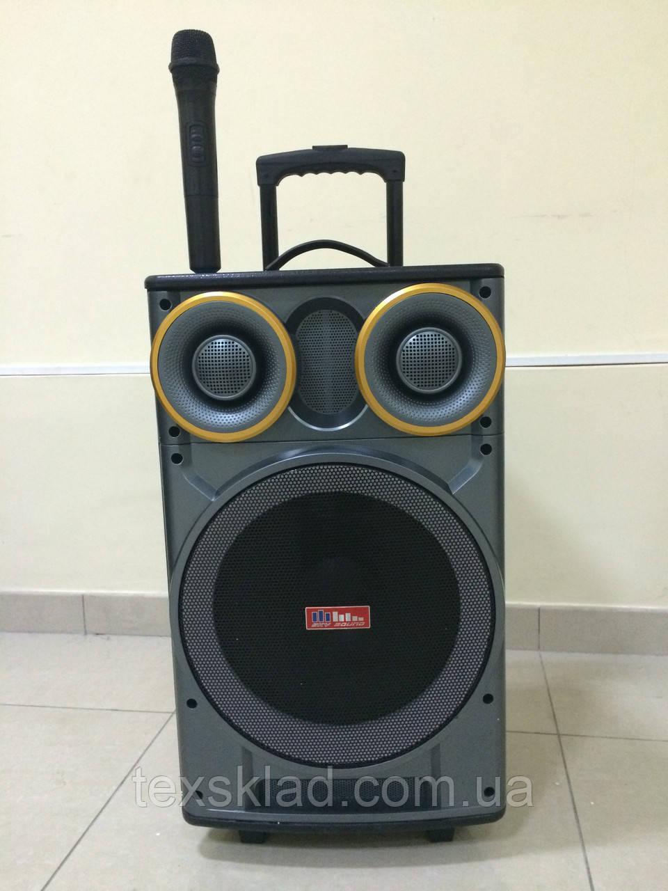 Портативная акустика с радиомикрофоном SS-666