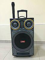 Портативная акустика с радиомикрофоном SS-666, фото 1