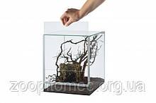 Міні Тераріум для слимаків, павуків скло 15x15x20 4,5 л