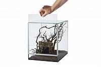 Мини Террариум  для улиток, пауков стекло 20x15x25 см,  7,5л