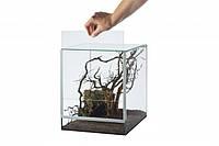 Террариум для  улиток,пауков. стекло 20x20x30см,  12 л.