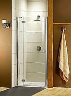 Душевая дверь Radaway Torrenta DWJ 31900-01-05 900мм