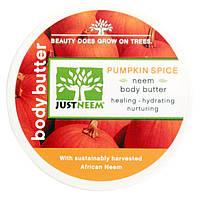 Just Neem, Pumpkin Spice Neem Body Butter, 4 oz (113 g)