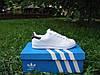 Кроссовки женские/мужские Adidas Stan Smith white/black (нат.кожа) р.36-45