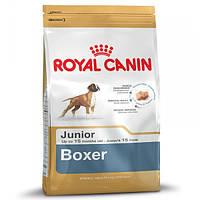 Корм для собак (Роял Канін) ROYAL CANIN Boxer Junior 12 кг - для зростаючих боксерів до 15 місяців