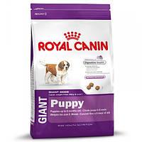 Корм для собак (Роял Канин) ROYAL CANIN Giant Puppy 15 кг - для щенков собак гигантских пород