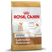 Корм для собак (Роял Канин) ROYAL CANIN Labrador Junior 12 кг - для щенков Лабрадора
