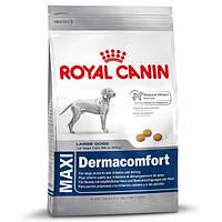 Корм для собак (Роял Канин) ROYAL CANIN Maxi Dermacomfort 12 кг - для собак крупных пород с проблемами кожи