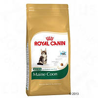 Корм для кошек (Роял Канин) ROYAL CANIN Kitten Maine Coon 36 10 кг - для котят породы Мейн Кун