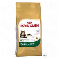 Корм для кошек (Роял Канин) ROYAL CANIN Maine Coon 31 Adult 10 кг - для взрослых кошек породы Мейн Кун