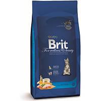 Корм для котів (Бріт) BRIT CAT KITTEN 8 кг - для котят