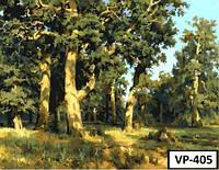 Картина на холсте по номерам VP 405 40x50см