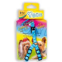 Dingo комплект - поводок + підтяжки для Йорка (рожеві і блакитні)