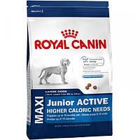 Корм для собак (Роял Канін) ROYAL CANIN Maxi Junior Active 15 кг - для цуценят собак великих порід