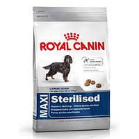 Корм для собак (Роял Канін) ROYAL CANIN Maxi Sterilised 12 кг - для стерилізованих собак великих порід