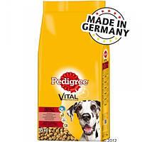 Pedigree Adult Maxi 15 кг з яловичиною (Німеччина)