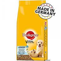 Pedigree Junior Medium 15 кг курятина і рис (Німеччина)