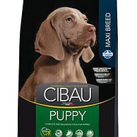 Корм для собак FARMINA CIBAU PUPPY MAXI 12 кг для цуценят крупних пород