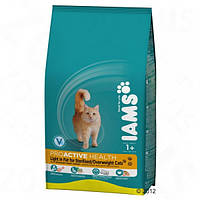 Iams Light in Fat 10 кг