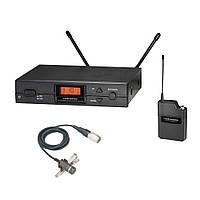 Радиосистема Audio-Technica ATW2110A/P