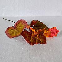 Ветка с осенними листьями