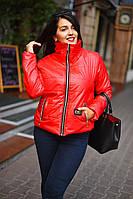 Женская  куртка с высоким воротом на синтепоне