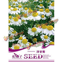 50шт садовые редкие травы семена ромашки растений