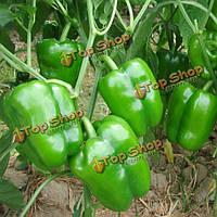 30шт зеленые семена перца сада двор душистый растительное многолетнее растение