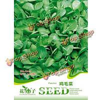 200шт китайский белые семена капусты сад балкон Brassica лесбийский овощи завод