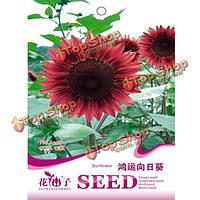 15шт красный семена подсолнечника сад во внутреннем дворике однолетнее растение травы