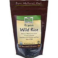 SALE, Органический дикий рис, Now Foods, 227 г