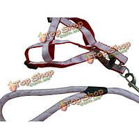 Регулируемая нейлон питомец собака перевозки кабеля тяговой ремень нагрудный ремешок, фото 1