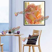 30x40см DIY романтический белочки живописи смолы rhinestone крест-стежком комплекты, фото 1