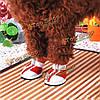 4шт набор противоскользящих собак Pet Mesh спортивная обувь
